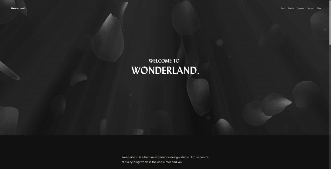 Wonderland. - Human Experience Design Studio in Amsterdam