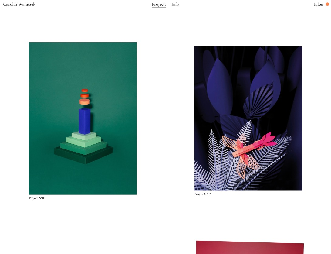 Carolin Wanitzek — Projects