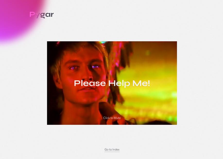 404 error page - Pygar
