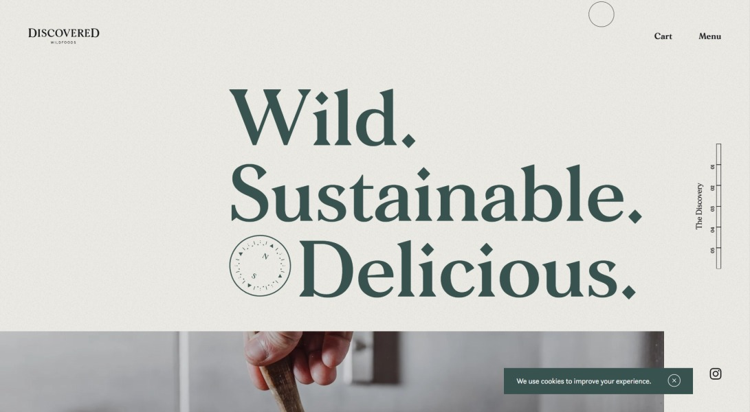 Discovered Wildfoods – Discovered Foods