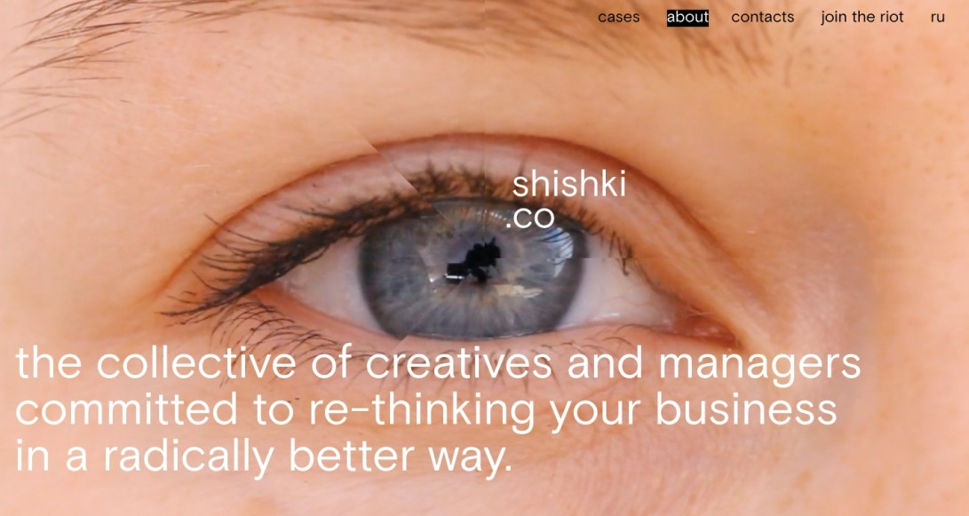 shishki.co