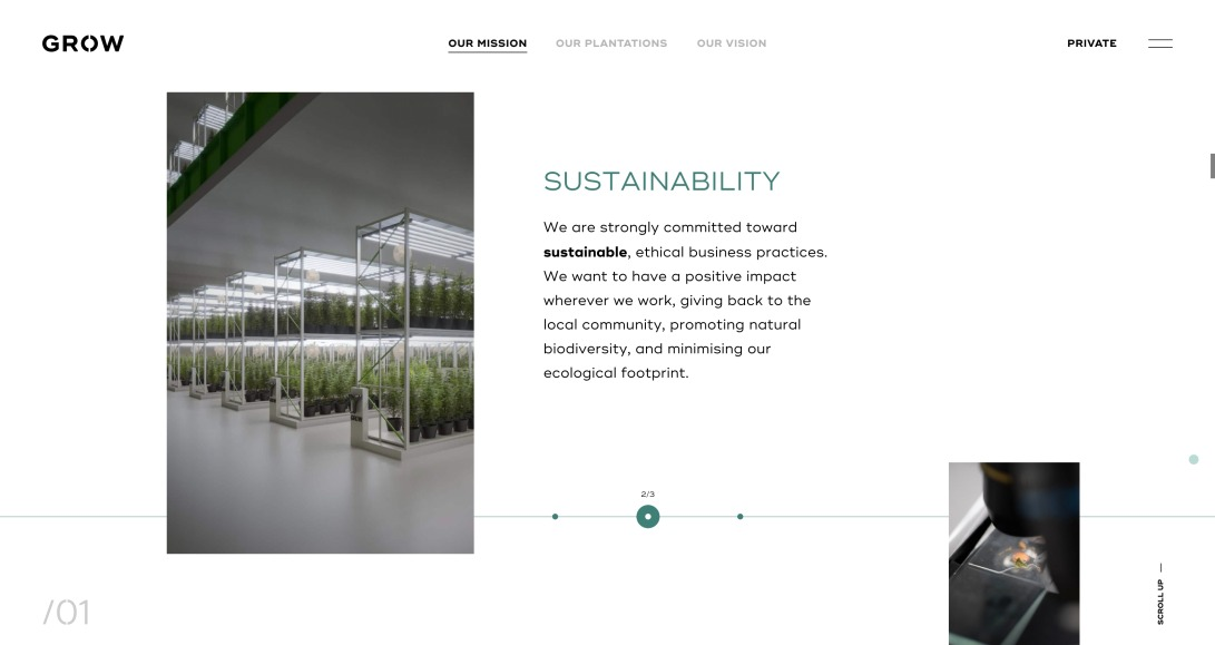 Grow - Learn more about us and our lab