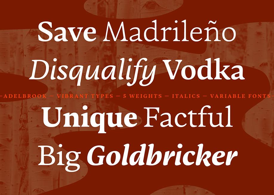Adelbrook - Dynamic Serif Typeface