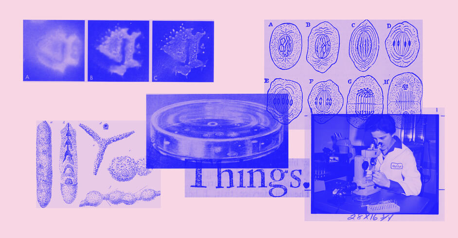 images of microscope, petri dish and microbes