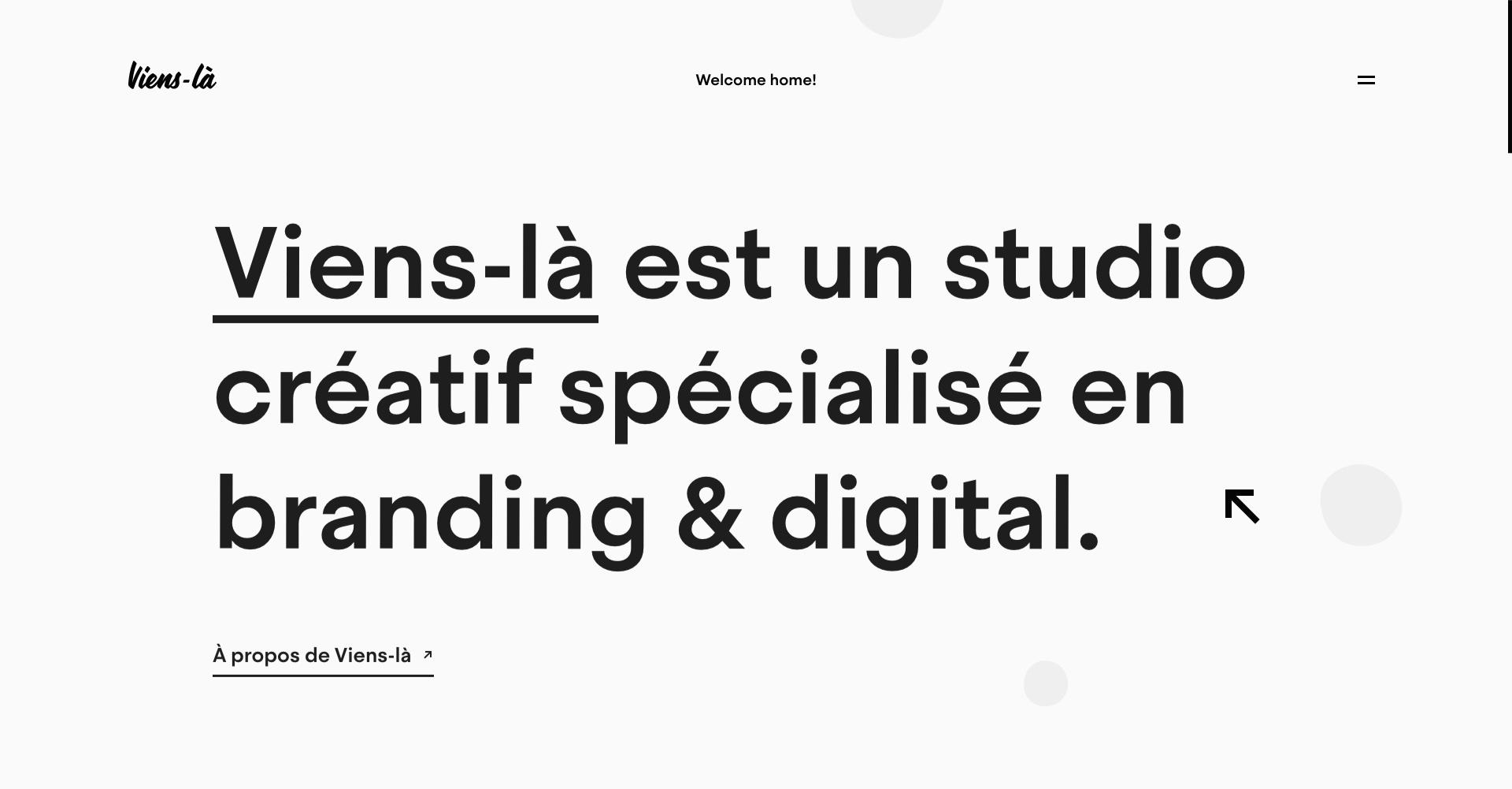 viens-la-website-introduction