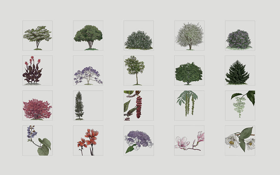 20 examples of tree illustration