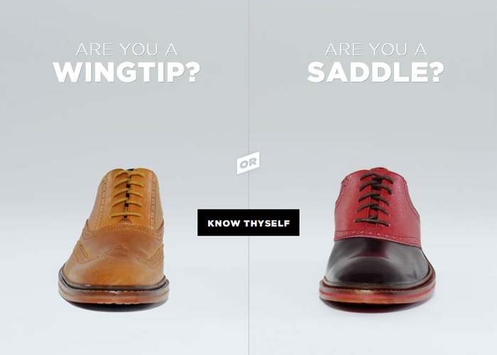 Wingtip or Saddle?