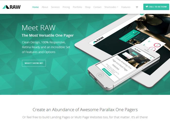 RAW - One Page WordPress Theme