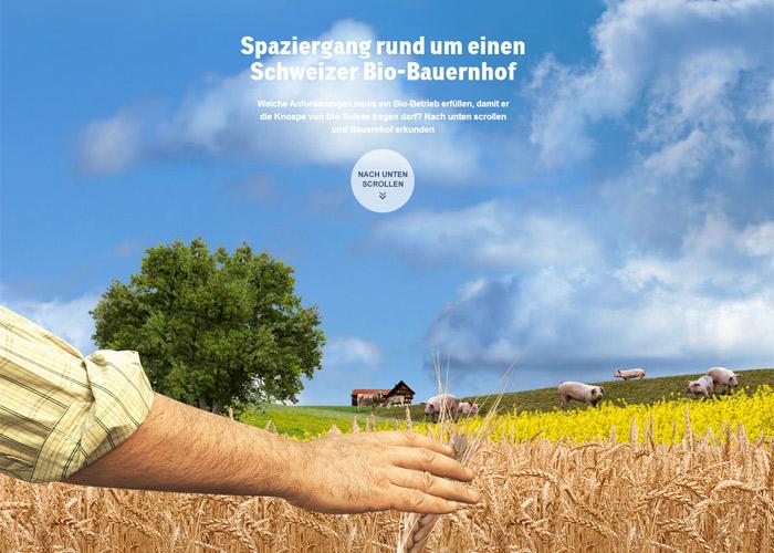 Swiss Organic Farm