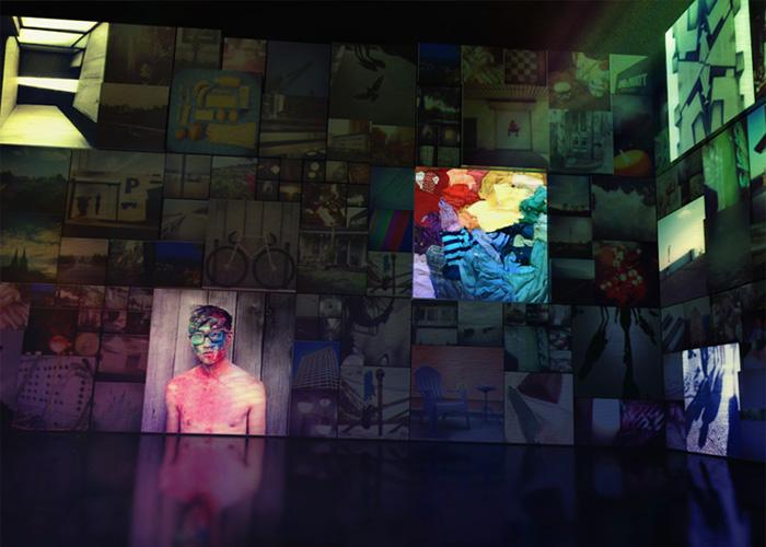 #Untamed. A digital photo installation.