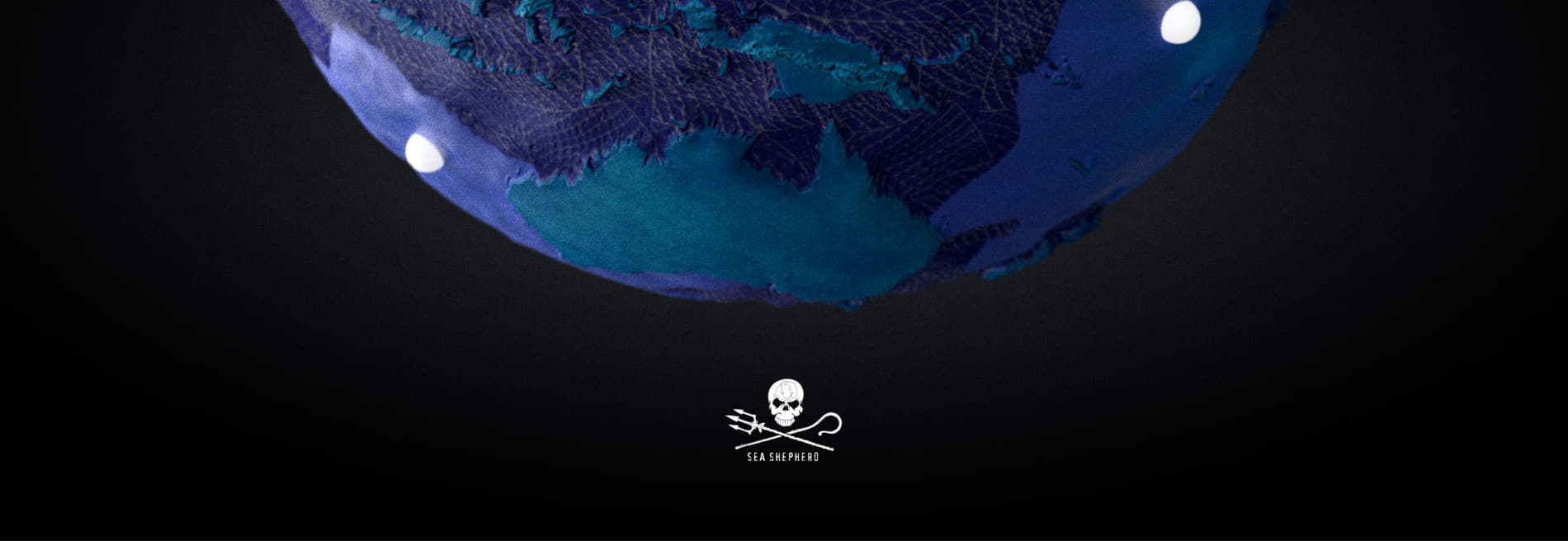 Sea Shepherd - No Fishing Net by Makemepulse wins Site of the Month January 2021