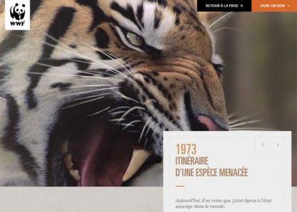 WWF- 40 ans d'engagement