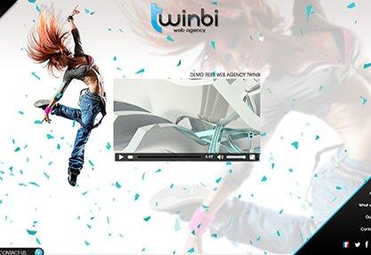 Web Agency Twinbi