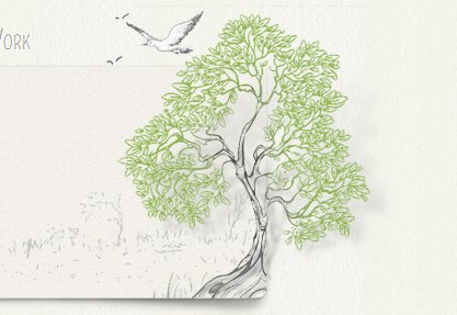 Mint Design Company - Japhia Olson