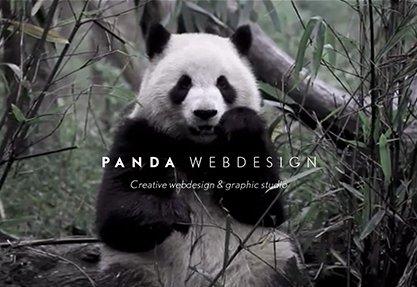 Panda Webdesign