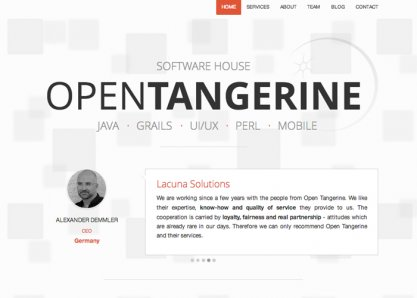 Software house Open Tangerine