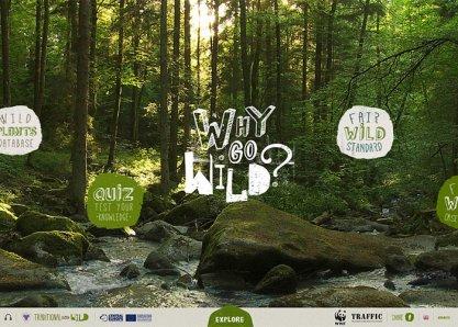 WWF - Why Go Wild