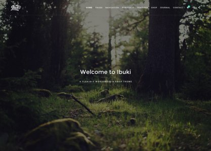 Ibuki - Creative & Shop Wordpress Theme