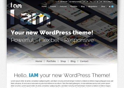 IAM - WordPress