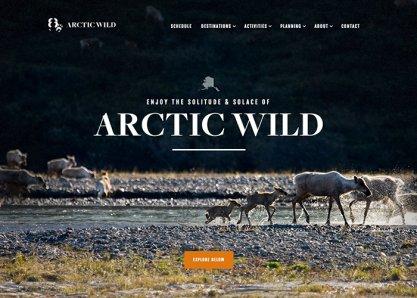Arctic Wild