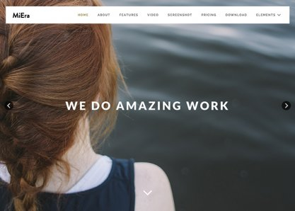 Miera - Wordpress One Page
