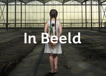 inBeeld