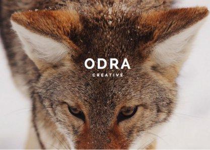 ODRA - Creative Multi-Purpose WordPress Theme