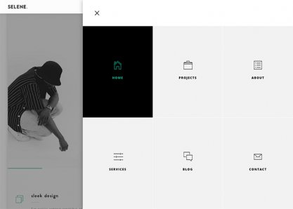 Selene - Portfolio / Agency Template