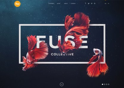 Fuse Collective | Creative Design and Production Studio