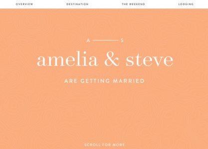 Amelia & Steve Wedding