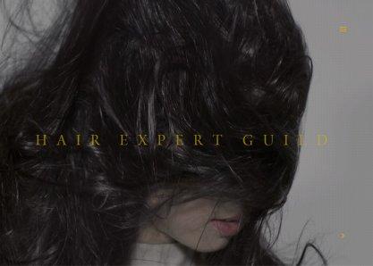 Hair Expert Guild