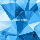 ICEBERG INTERACTIVE LLC