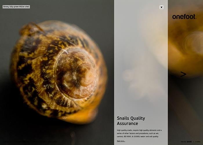 onefoot - snail farming