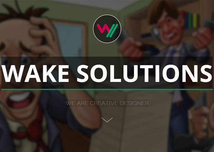 Wake Solutions - Web/Mobile Business Solutions