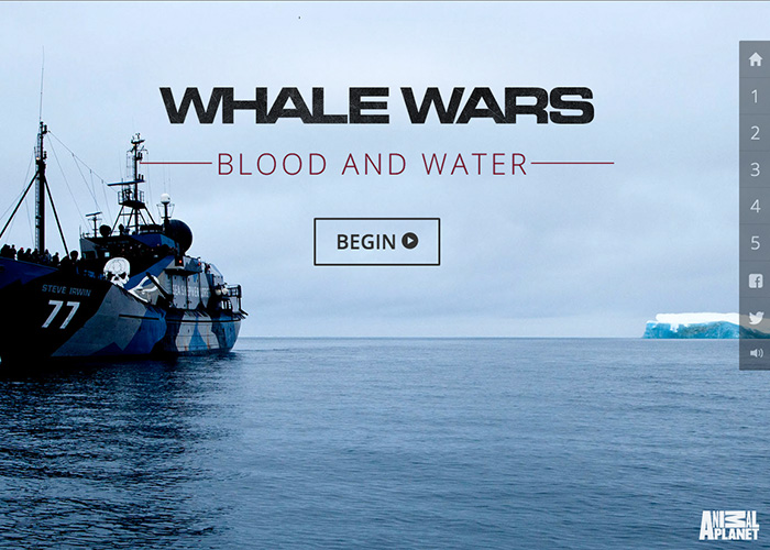 Whale Wars: Blood and Water