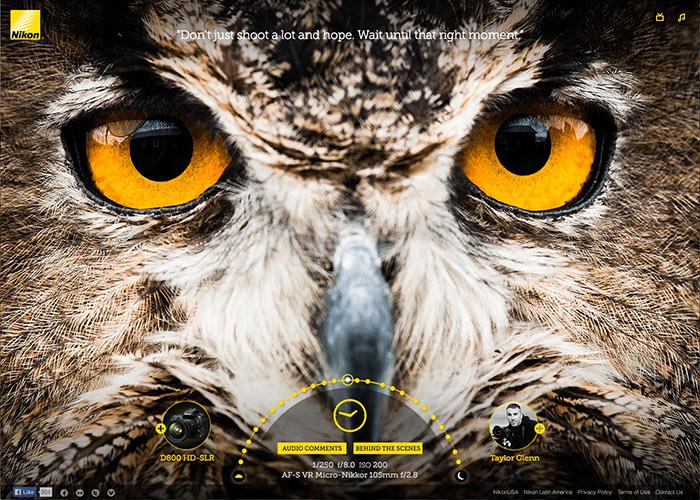 Nikon Image Quality Experience