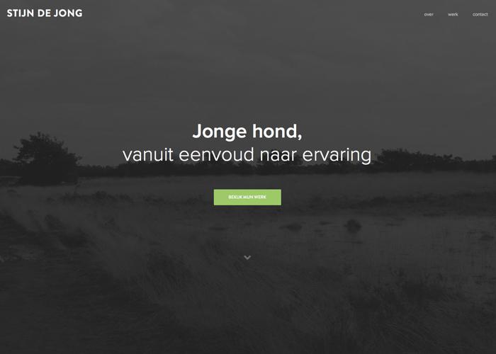 Stijn de Jong