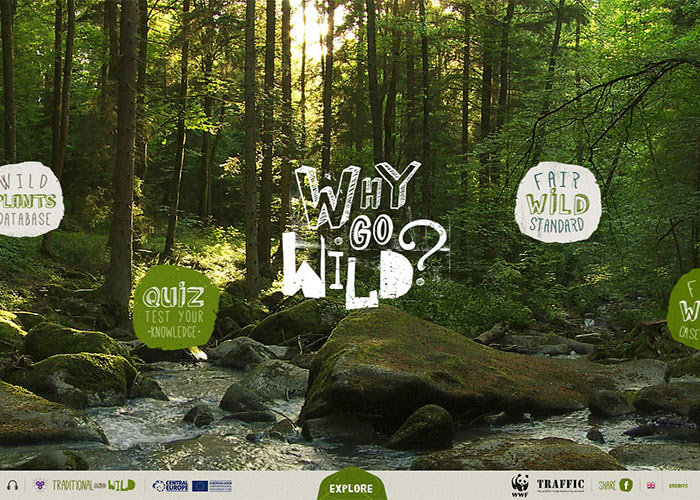 WWF - Why Go Wild