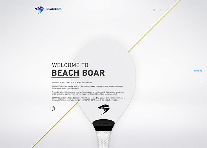 Beach Boar