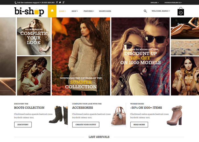Bi-Shop All In one WP Theme