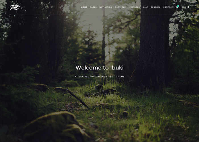 Ibuki - Creative & Shop Wordpress Theme
