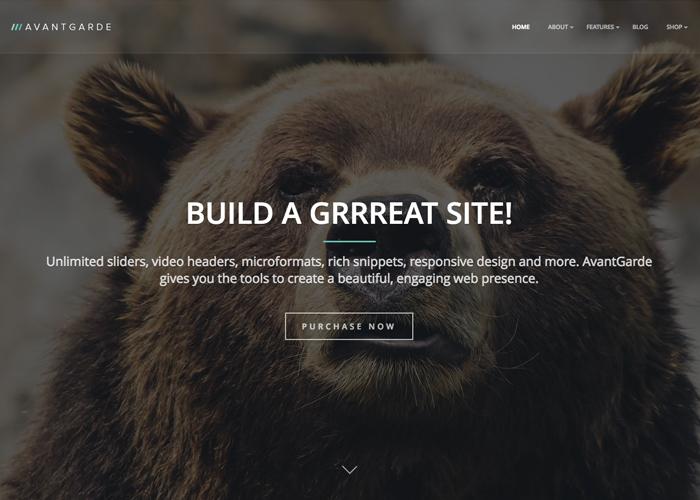 AvantGarde - WordPress Theme