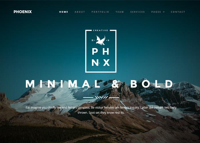 Phoenix Minimal Multipurpose Portfolio