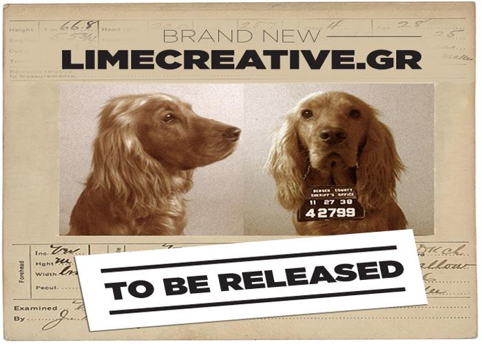 Lime Creative Agency