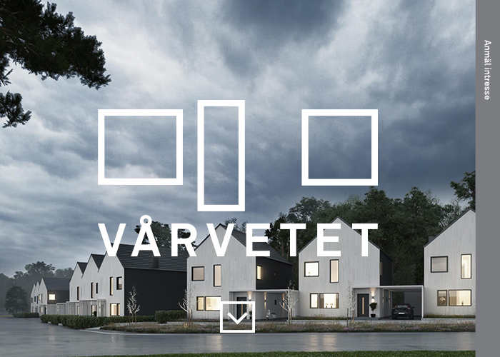 Vårvetet