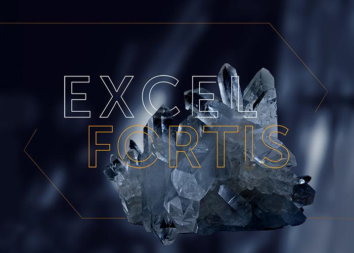 Excel Fortis