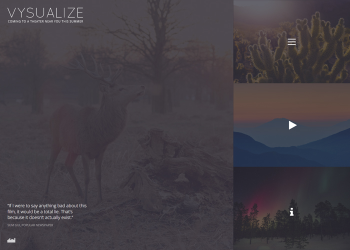 VYSUALIZE - Film Campaign WP Theme