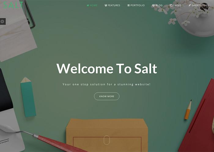 Salt Multi Purpose HTML Template Awwwards Nominee