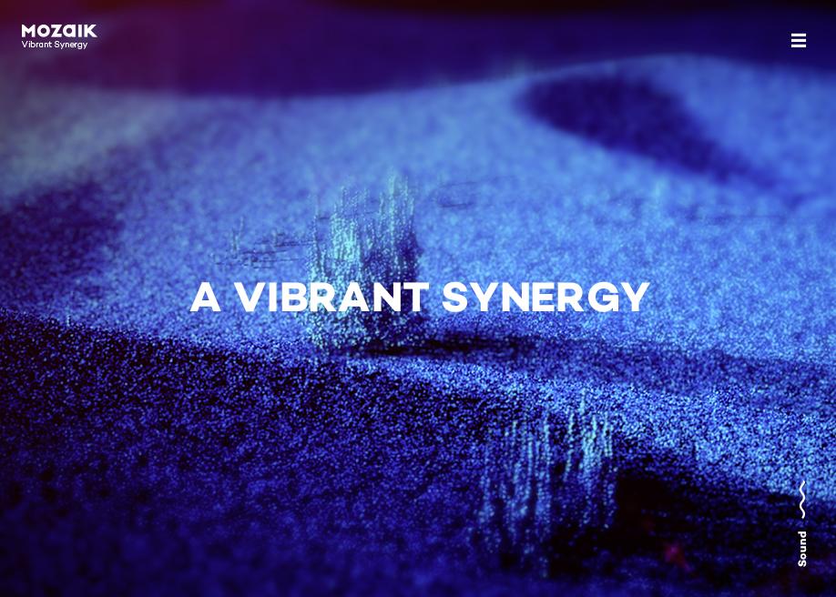 Mozaik - Vibrant Synergy
