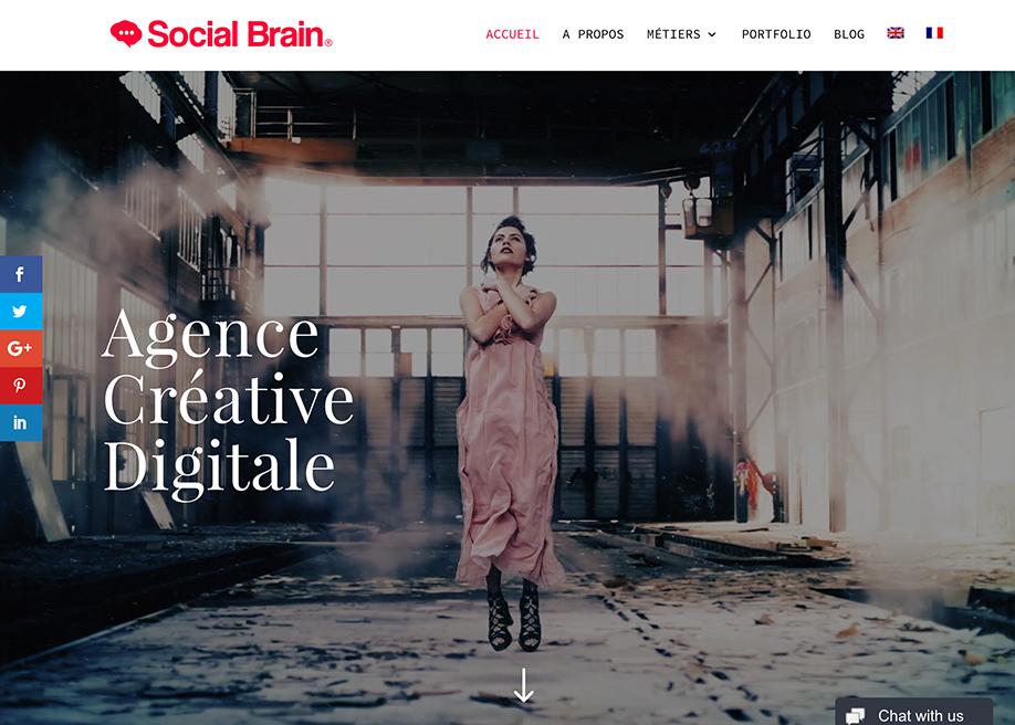 Social Brain